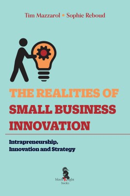 The Realities of Small Business Innovation