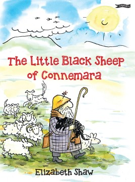 The Little Black Sheep of Connemara