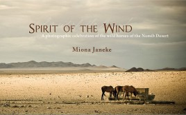 Spirit of the Wind