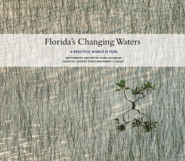 Florida's Changing Waters