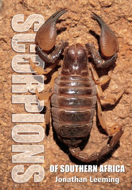 Scorpions of South Africa