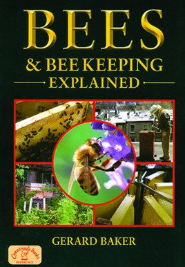 Bees and Beekeeping Explained