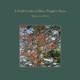 A Field Guide to Other People's Trees